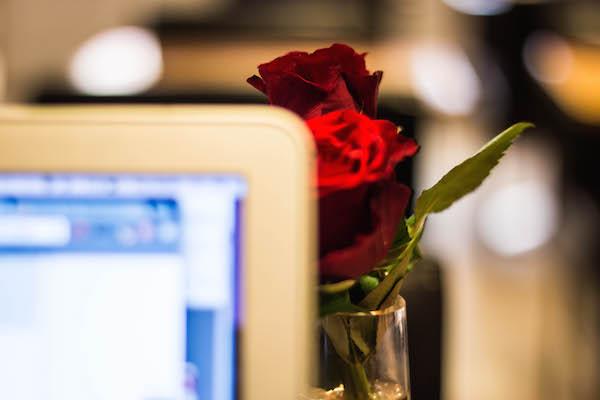 rose laptop 600